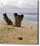 Beach Scenery Acrylic Print
