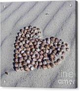 Beach Treasure Acrylic Print