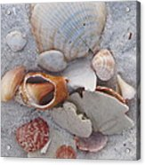 Beach Treasures 2 Acrylic Print