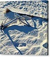 Beach Treasures Acrylic Print