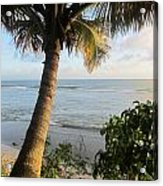 Beach Under The Palm 4 Acrylic Print