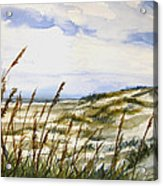 Beach Watercolor 3-19-12 Julianne Felton Acrylic Print
