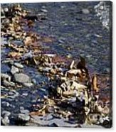 Beach With Stones Acrylic Print