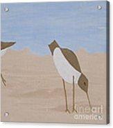Middle - Beachcombers Trio Acrylic Print