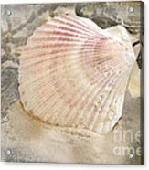 Beached Acrylic Print by Betty LaRue