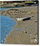 Beached Dinghy Acrylic Print