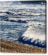Beaches And Birds Acrylic Print