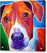 Beagle - Copper Acrylic Print