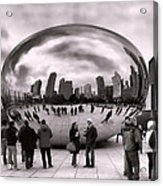 Bean Stalking Acrylic Print by Peter Chilelli