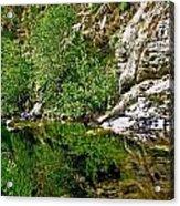 Bear Creek Acrylic Print
