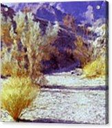 Bear Creek Trail II Acrylic Print
