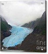 Bear Glacier Acrylic Print