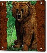 Bear Naked Acrylic Print