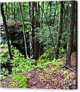 Beartown Rocks State Park Acrylic Print