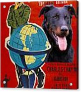 Beauceron Art Canvas Print - The Great Dictator Movie Poster Acrylic Print