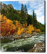 Beautiful Autumn Acrylic Print by Dan Mihai