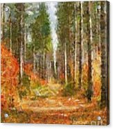 Beautiful Autumn Acrylic Print