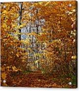Beautiful Autumn Sanctuary Acrylic Print