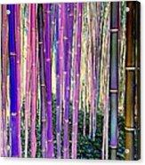 Beautiful Bamboo Acrylic Print