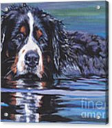 Beautiful Berner Acrylic Print
