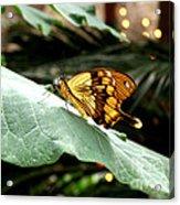 Beautiful Blessings Acrylic Print