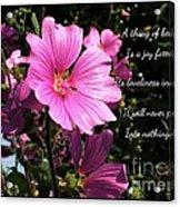 Beautiful Blossom 2 Acrylic Print