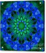 Beautiful Blue Acrylic Print by Annette Allman