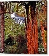 Beautiful Bush Acrylic Print