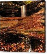 Beautiful Canyon And Waterfall Acrylic Print