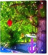 Beautiful Colored Glass Ball Hanging On Tree 1 Acrylic Print