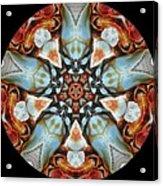 Beautiful Crab 1 Acrylic Print