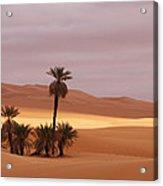 Beautiful Desert Acrylic Print