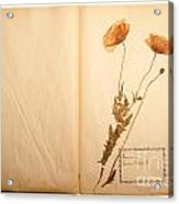 Beautiful Dried Vintage Flowers Acrylic Print