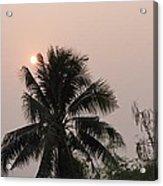 Beautiful Evening Acrylic Print by Gornganogphatchara Kalapun