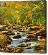 Beautiful Fall View In Tennessee Acrylic Print