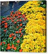 Beautiful Flower Garden Bellagio Las Vegas Acrylic Print