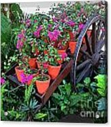 Beautiful Flower Wagon Acrylic Print
