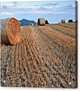 Beautiful Golden Hour Hay Bales Sunset Landscape Acrylic Print