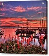 Beautiful Harbor Acrylic Print
