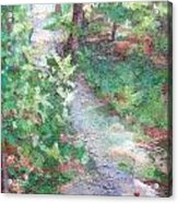 Beautiful Hike Acrylic Print