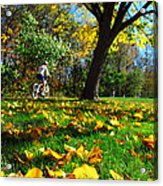 Beautiful Landscape Acrylic Print by Boon Mee