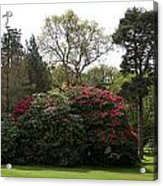Beautiful Muckross Gardens In Spring Acrylic Print