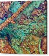 Beautiful Rebar Hot Springs Acrylic Print