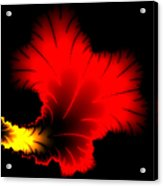 Beautiful Red And Yellow Floral Fractal Artwork Square Format Acrylic Print