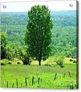 Beautiful Pennsylvania Summer Scene - Colorful Landscape - Painting Like Acrylic Print