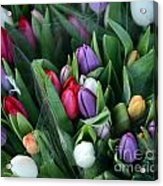 Beautiful Tulips Bouquet Acrylic Print