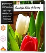 Beautiful Tulips Series 2 Acrylic Print