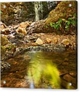 Beautiful View Of Upper Falls Located In Uvas Canyon County Park Forest Reflection Acrylic Print