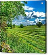 Summer View In Yorkshire Acrylic Print