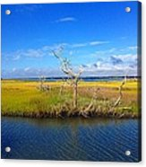 Beautiful View Topsail Island Acrylic Print